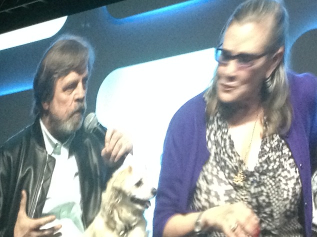 Mark Hamill and Carrie Fisher at final panel